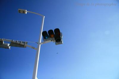 青空の中の信号機。