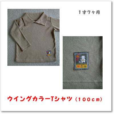 ウイングカラーTシャツ