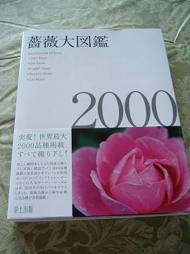 20060523140026.jpg