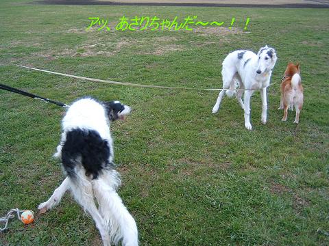 20061213210959.jpg