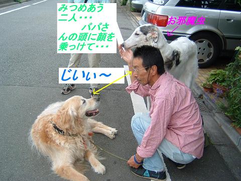 20070621194448.jpg