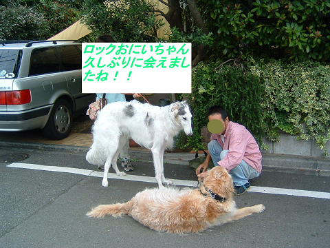 20070621194539.jpg