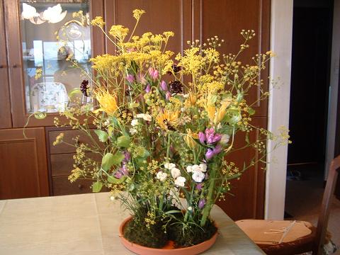 秋の花で0001