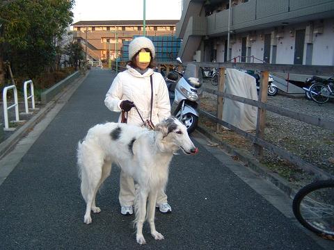 冬のお散歩姿p0001