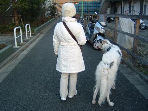 冬のお散歩姿 (1)0001