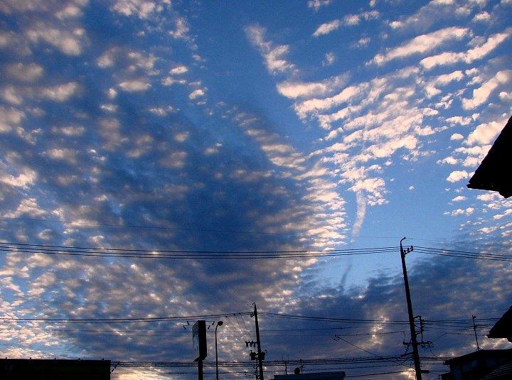20061022-1.jpg