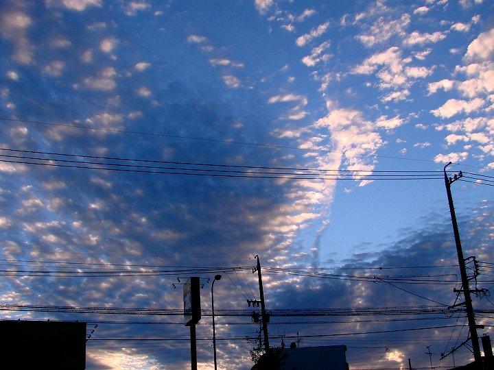 20061022-2.jpg