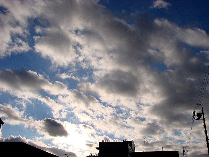 20061117-1.jpg