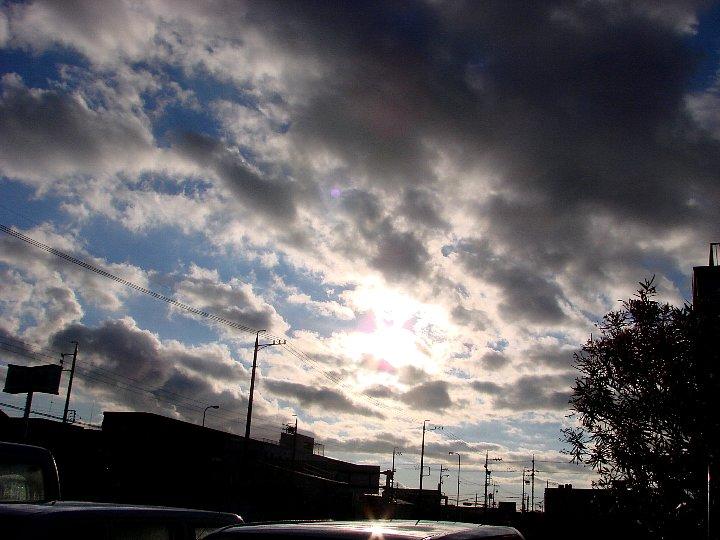 20061117-3.jpg