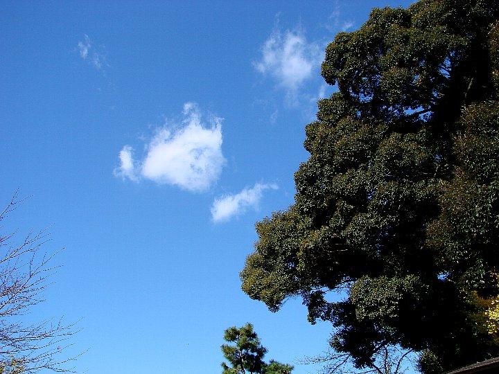 20061213-1.jpg