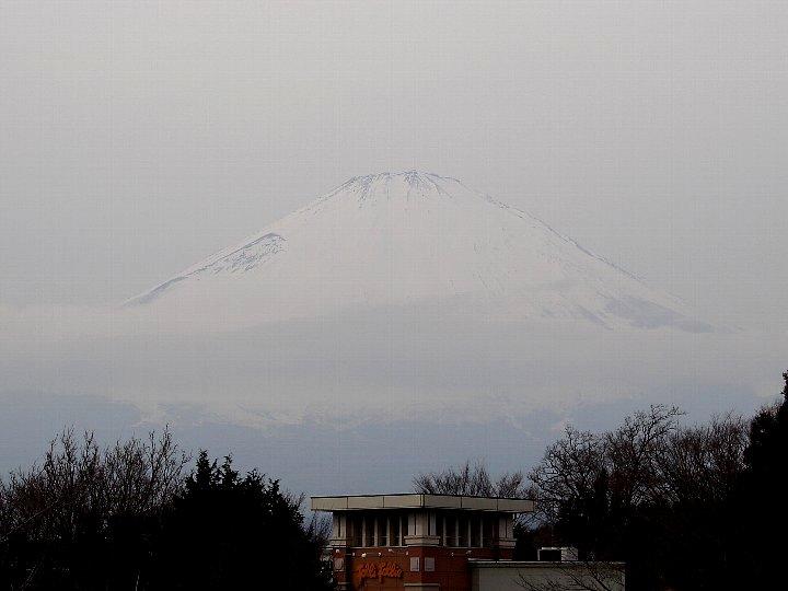20070127-5.jpg