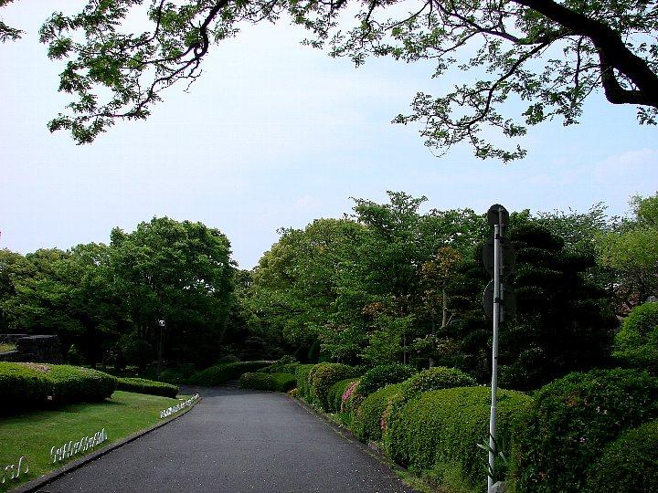 20070504-1.jpg