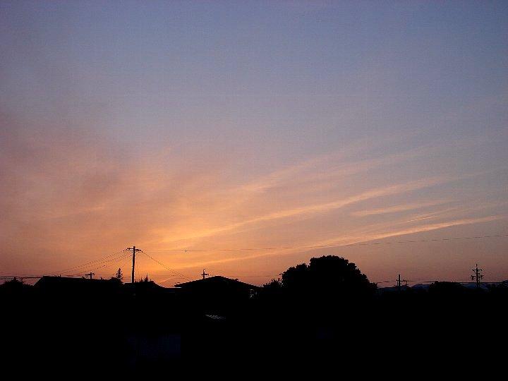 20070516-1.jpg