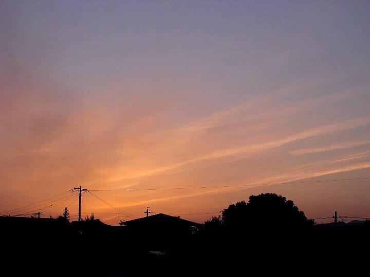20070516-2.jpg