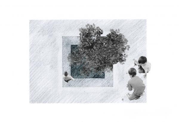 tree+fin_convert_20120415113534.jpg