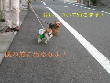 DSCN2213_sh02.jpg