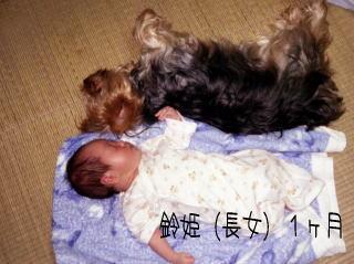 suzuyuki.jpg