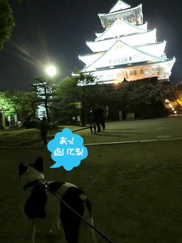 大阪城もやっとライトアップ再開