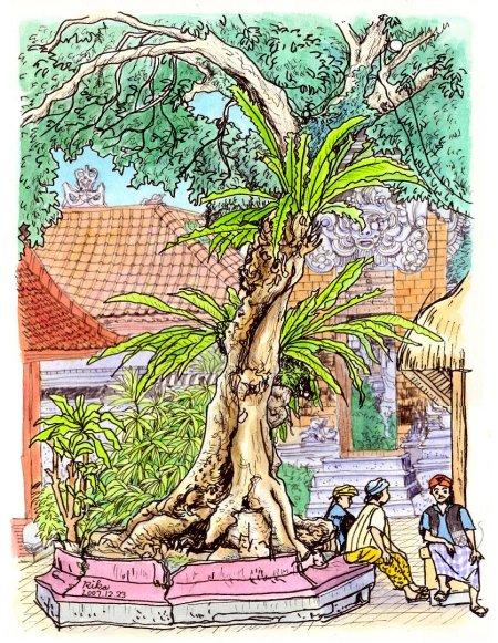 バリ王宮の樹