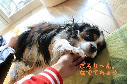 2007/12/30 その2