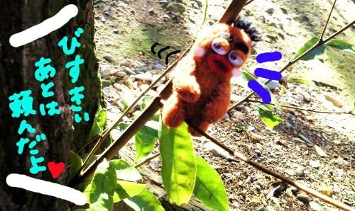 お花の植え変え☆