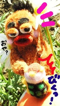 6番目のちくちくファミリー5☆
