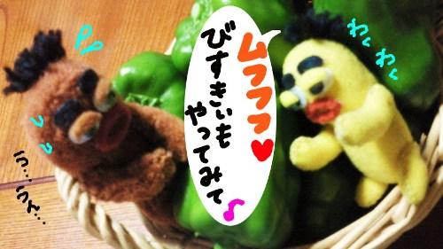 夏の収穫祭15☆