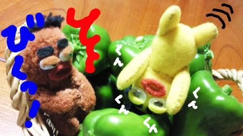 夏の収穫祭12☆