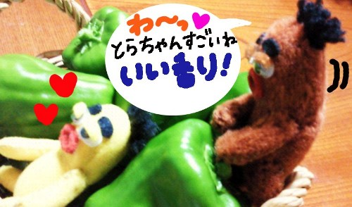 夏の収穫祭17☆