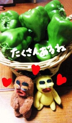 夏の収穫祭6☆