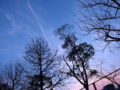 20110225_夕空