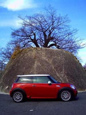 20110305_岩とジョン-v