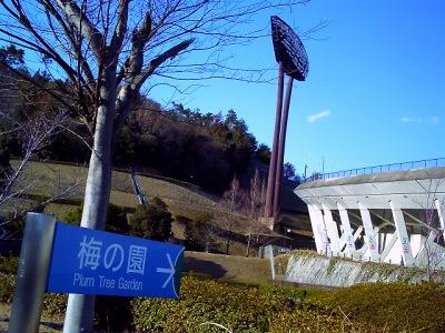 20110311_梅1-v