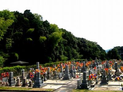 20110815_お墓参り