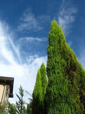 20110903_台風接近中-PM4時半頃