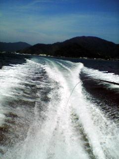 20060807018.jpg