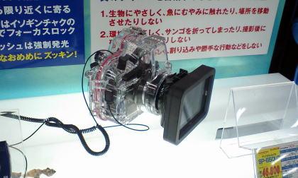 2007081821.jpg