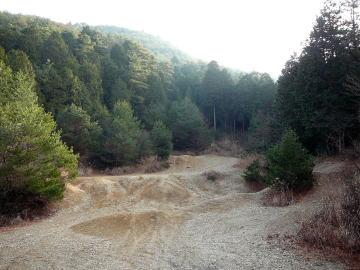 2008010906.jpg