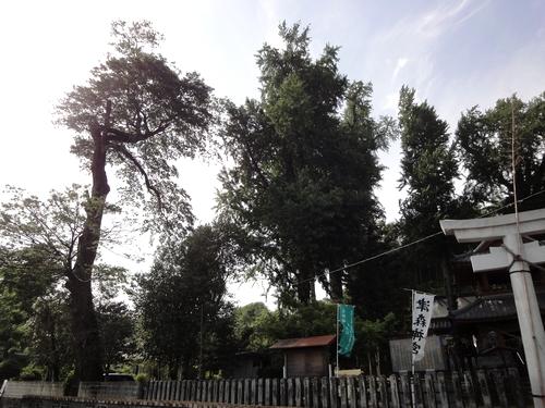 230514 津森神社2