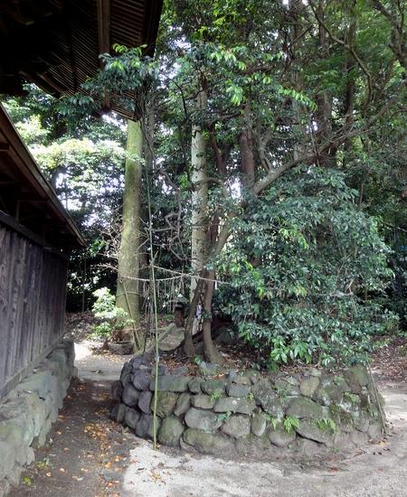 230625 長野阿蘇神社10-1
