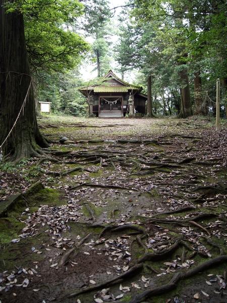 230702 雨宮神社7