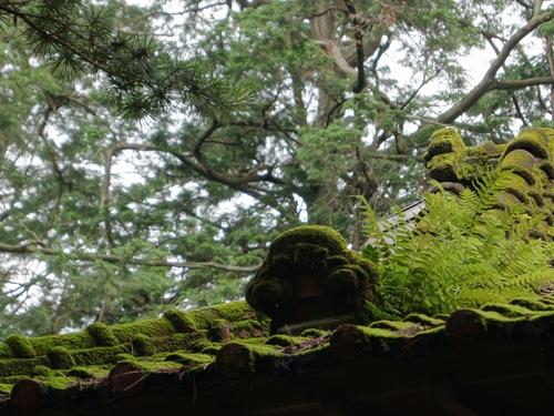 230702 雨宮神社15