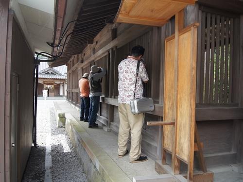 230716 オモテなし阿蘇神社3