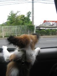 車中にて。。。