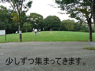 070916 保土ヶ谷公園 01