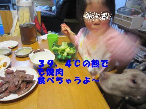 IMG_7258_convert_20110308105322.jpg