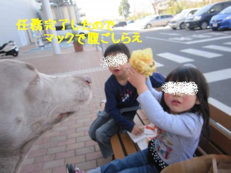 IMG_7401_convert_20110322154028.jpg