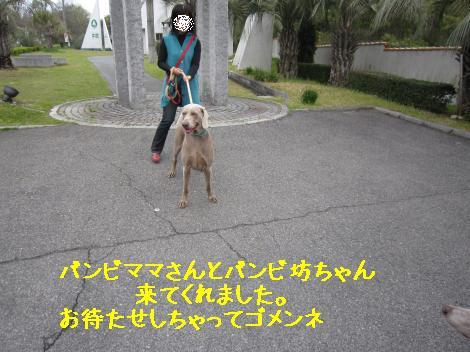IMG_7698_convert_20110503225933.jpg