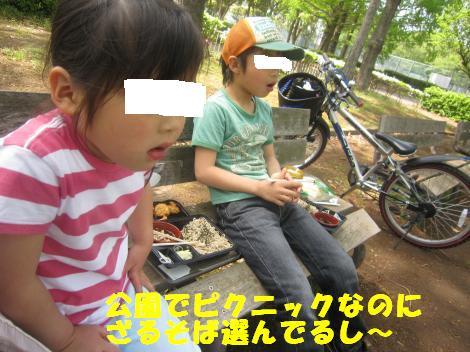 IMG_7862_convert_20110505124505.jpg