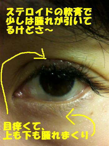 P1010069_convert_20110414133214.jpg